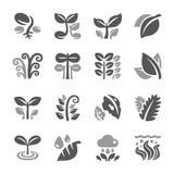 Växt- och bladsymbolsuppsättning royaltyfri illustrationer