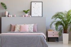 Växt och kabinett bredvid säng med kuddar i grå och rosa bedr royaltyfri bild