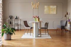 Växt och målning i grå öppet utrymmeinre med stolar på att äta middag tabellen under den guld- lampan Verkligt foto arkivbilder