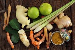 Växt- och medicin. Royaltyfri Foto