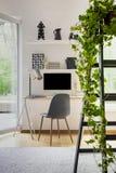 Växt på stege i den vita inrikesdepartementetinre med fönstret och grå färgstol på skrivbordet med lampan Verkligt foto royaltyfri bild