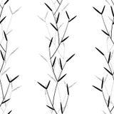 Växt- sömlöst Arkivbild