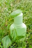 Växt- skönhetsmedel på gräset Royaltyfria Foton