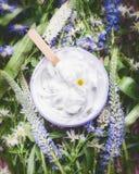 Växt- skönhetsmedelkräm med örter och blommor, bästa sikt Skincare produkt, wellness i krus Naturlig kosmetisk produkt och skönhe Arkivbilder