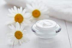 Växt- skönhetsmedelkräm med naturlig organisk fuktighetsbevarande hudkräm för kamomillvitamin royaltyfria foton
