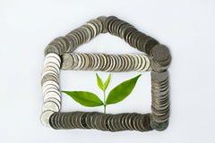 växt som växer från mynt - finansiell planläggning arkivfoto