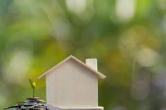 Växt som växer i besparingmynt föreställa hem- äganderätt och den Real Estate affären Royaltyfria Foton