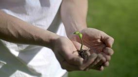 Växt som växer på händer stock video