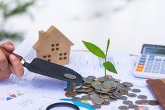 Växt som växer på mynt Ökande antal av kassa, start, begrepp för pengartillväxt, investeringbegrepp om fastigheten, hem och royaltyfria bilder