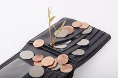 Växt som växer ut ur mynt som isoleras på vit Royaltyfria Foton