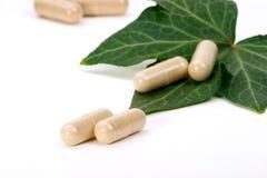 växt- supplements Fotografering för Bildbyråer