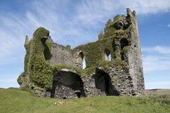 Växt täckt Ballycarberry slott, Cahersiveen Arkivbilder