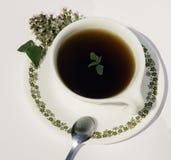 växt- tea Arkivbilder