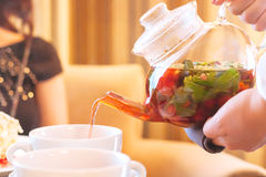 växt- tea för kopp Arkivfoto