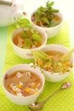 växt- tea för koppar fyra royaltyfria foton