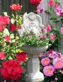 Växtbarnkammare Royaltyfri Fotografi