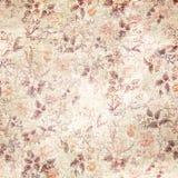 växten för torra blom- grungy leaves för bakgrund befläckte den gammala paper tappning Royaltyfria Foton