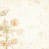 växten för torra blom- grungy leaves för bakgrund befläckte den gammala paper tappning Royaltyfria Bilder
