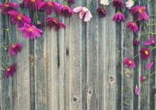 växten för torra blom- grungy leaves för bakgrund befläckte den gammala paper tappning Sommar blommar på ridit ut trä, t Arkivbilder