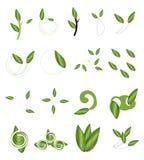 Växter stock illustrationer