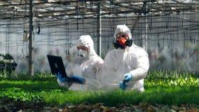 Växter får bevattnade med kemikalieer av två forskare på arbete arkivfilmer