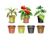 växter för 1 inställda inomhus kontor Royaltyfri Foto