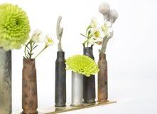 Växter och blommor i spenderade kulCasingvaser royaltyfria foton