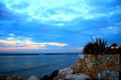 Växter och stenar nära havet under solnedgång arkivbild