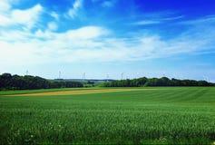 VÄXTER OCH TRÄD, fält, sommar, Luxembourg, Europa Royaltyfria Bilder