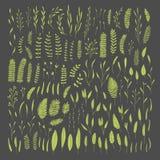 Växter sidor royaltyfri illustrationer