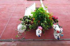 Växter som växer i blomkrukor som göras från återanvända plast- flaskor royaltyfri fotografi