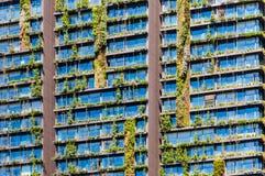 Växtfasad - lodlinjeträdgård arkivfoto