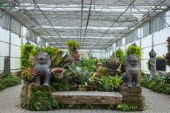 Växthus Arkivbilder