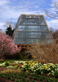 växthus 6 royaltyfria bilder