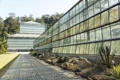 Växthus i botaniska trädgårdar för drottning Sirikit, Chiang Mai Provin Arkivfoton