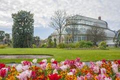 Växthus i de nationella botaniska trädgårdarna royaltyfria bilder