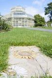 Växthus i den nationella botaniska trädgården arkivbilder