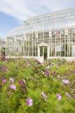 Växthus i den nationella botaniska trädgården arkivbild
