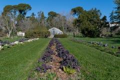 Växthus i mitt av Madrid Fotografering för Bildbyråer