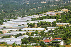 Växthus i Turkiet Arkivbild