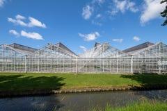 Växthus i Westland, Nederländerna Arkivfoto