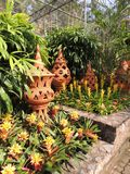 Växthus med blommor och delikata krukor av lera Arkivfoto