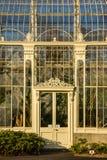 växthus Nationella botaniska trädgårdar dublin ireland royaltyfri bild