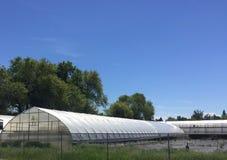 Växthus och staket Royaltyfri Bild