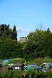 Växthus på odlingslottar, UK Arkivfoton