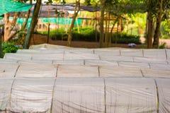 Växthus som göras av polycarbonaten Royaltyfri Fotografi