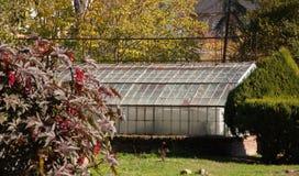 Växthuset i parkerar i Madrid arkivbild