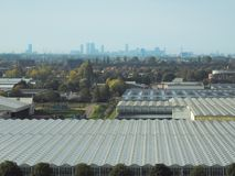 Växthuskomplex i Nederländerna med horisonten av staden av Haag på horisonten royaltyfri foto