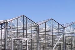 Växthusyttersida med blå himmel Fotografering för Bildbyråer