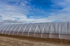 Växthusyttersida på blå himmel Royaltyfri Bild